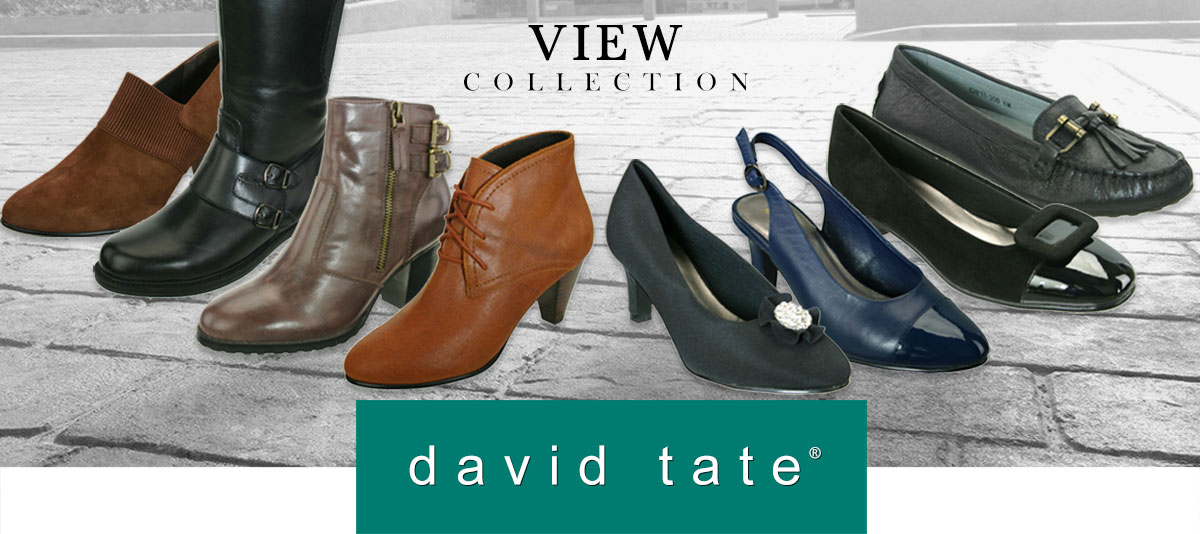 David Tate Shoes - Stylish Women's Shoes